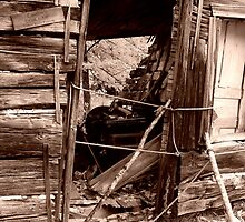 Shack door at Old Victoria by jrier