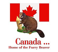 Furry Canada Photographic Print