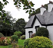 Cottage in the Park by Pat Herlihy