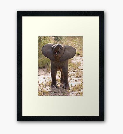 Baby Elephant Greeting Framed Print