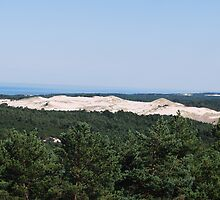 huge sand dune near Leba, Poland by Robinho