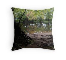The Concord River Throw Pillow