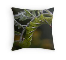 Infamous Tomato Hornworm Throw Pillow
