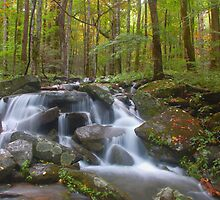 smoky mountain falls by dc witmer