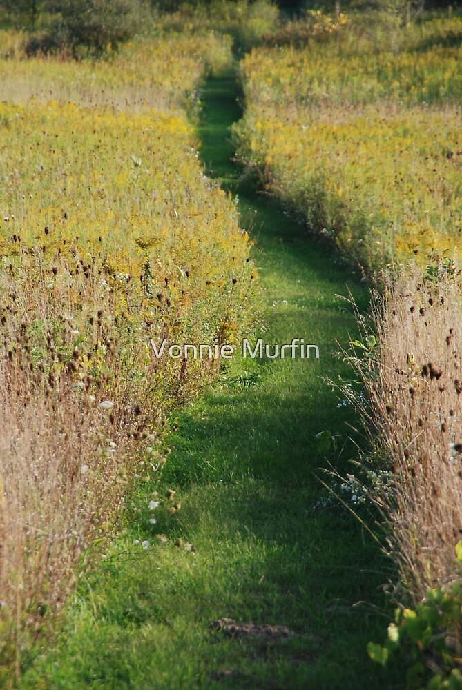 The Path by Vonnie Murfin