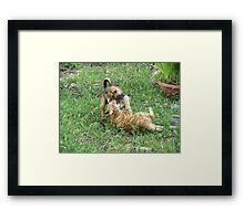 You need to floss, Fred! Framed Print
