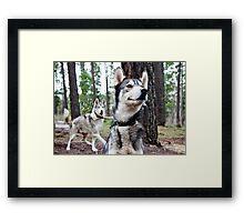 Mofo and Kewl Framed Print
