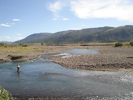 Fly Fisherman - Soda Butte Creek by May Lattanzio