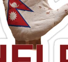 Nepal t-shirt 2015 - HELP NEPAL Sticker