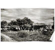 The Country Life 2  ( BoneYard Series ) Poster