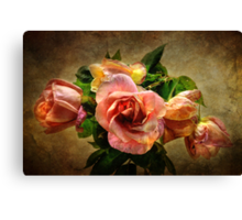 Faded Beauties Canvas Print