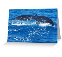 Descending tail Greeting Card