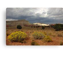 Kodachrome Basin State Park, Utah Canvas Print