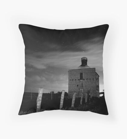 Chicory Kiln Throw Pillow