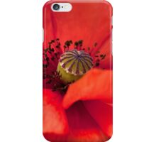 A Red Poppy iPhone Case/Skin