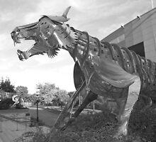 Princeton University Stadium Tigers by Michael Bender