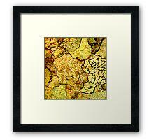 Macro Bark Framed Print