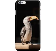 Southern Yellow-billed Hornbill, South Africa iPhone Case/Skin