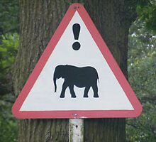 Warning - Elephant Crossing by groovygreen