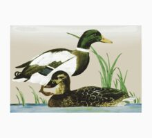 Painted Mallard Ducks... Free State, South Africa Kids Tee