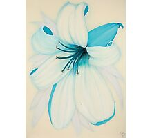 Lilipol Bright Turquoise Blue Lily Flower Painting Photographic Print