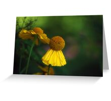 Flower Ballet Greeting Card
