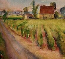 Vineyards, Gageac by Fee Dickson