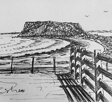 The Nut and Fence Stanley Tasmania by Ruckrova