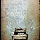 moving or dumping ? by Sonia de Macedo-Stewart