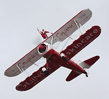 Guinot Wing Walker by PhilEAF92