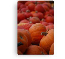 Flood of Pumpkins Canvas Print
