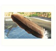 Golden Eagle wing feather Art Print