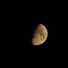 Half Moon; La Mirada, CA USA by leih2008