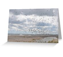 Rondeau Provincial Park - South Beach Greeting Card