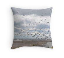 Rondeau Provincial Park - South Beach Throw Pillow