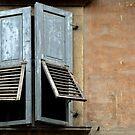 Withered window by Arie Koene