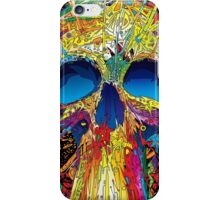 coloful Skull Style iPhone Case/Skin
