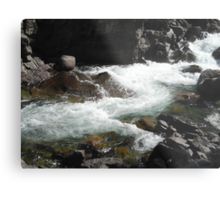 The River M Metal Print