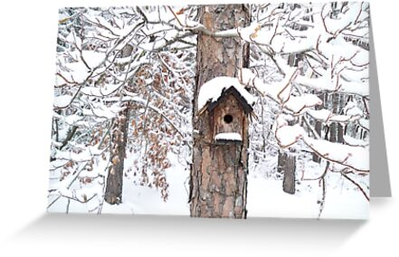 A Bird's Home Sweet Home by Seth LaGrange