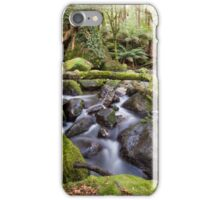 Taggerty River iPhone Case/Skin