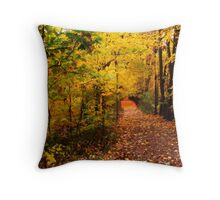 Autumn Path To Nowhere Throw Pillow