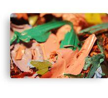Paint Flakes Macro Canvas Print