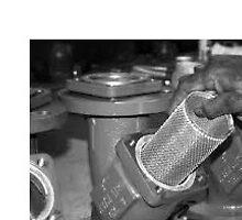 Basket strainer by petarglobal40