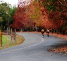 Autumn Biking by socalgirl