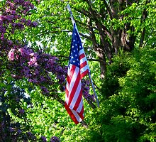 Old Glory! by swaby