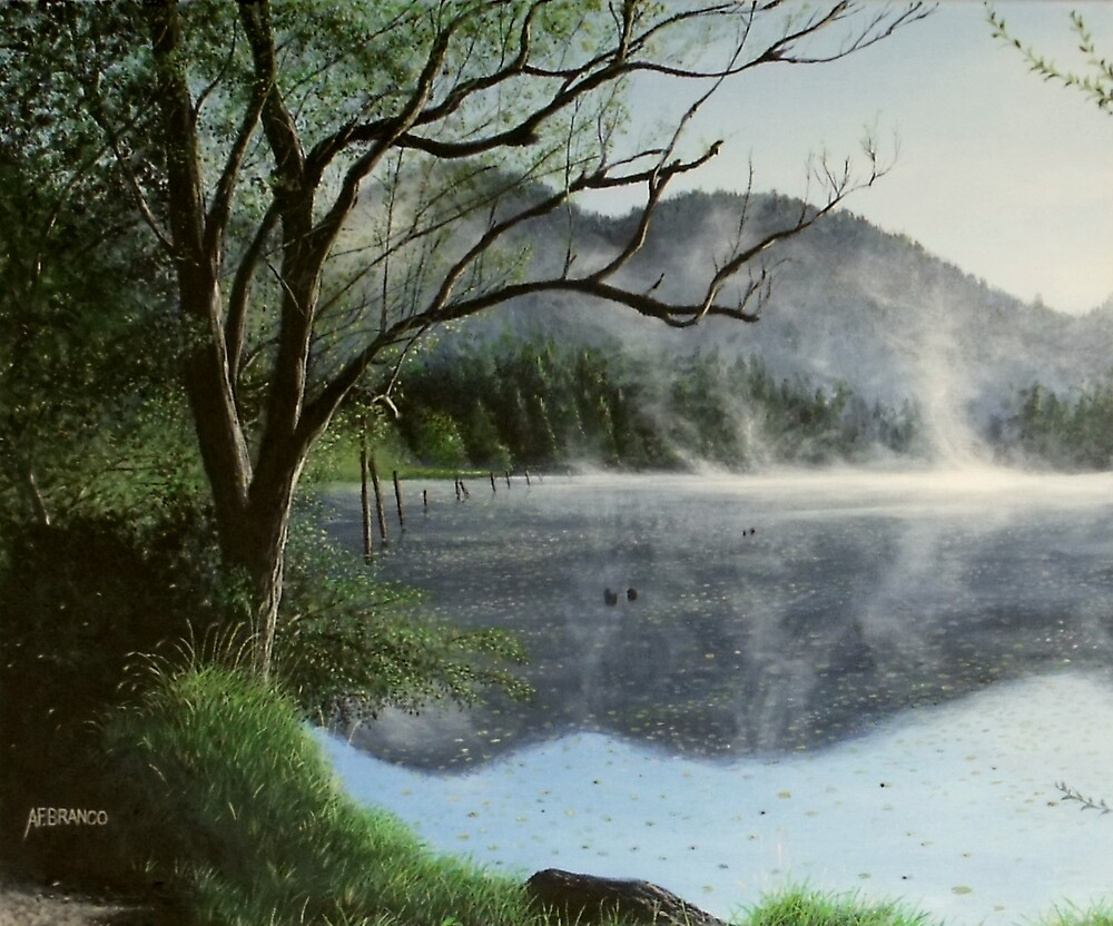 Clear Lake Morning by A. F. Branco