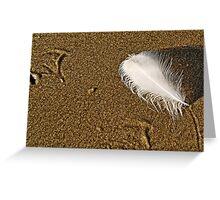 Footprints & Feathers ~ Lyme Regis Greeting Card