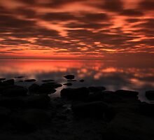 Twight beauty by kathy s gillentine