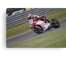 Terol - World Superbikes Canvas Print