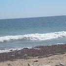 Beachscape by MrsBuden